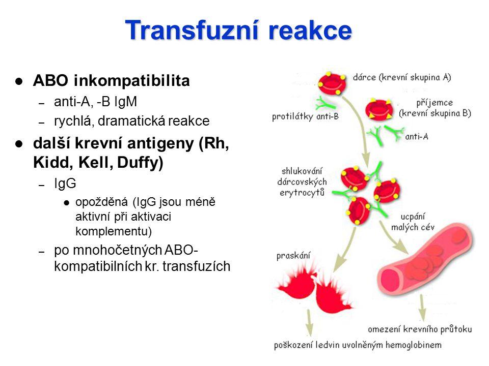 Transfuzní reakce ABO inkompatibilita