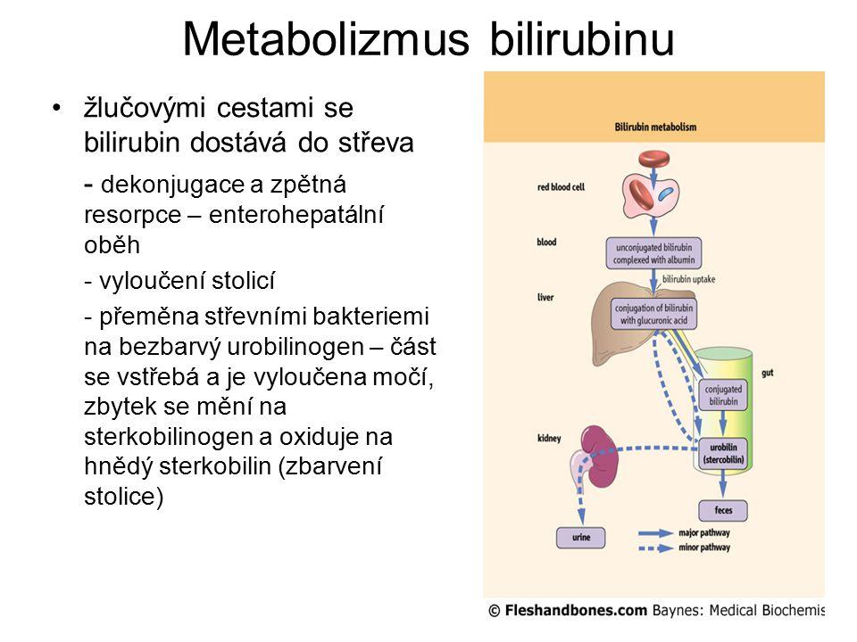 Metabolizmus bilirubinu