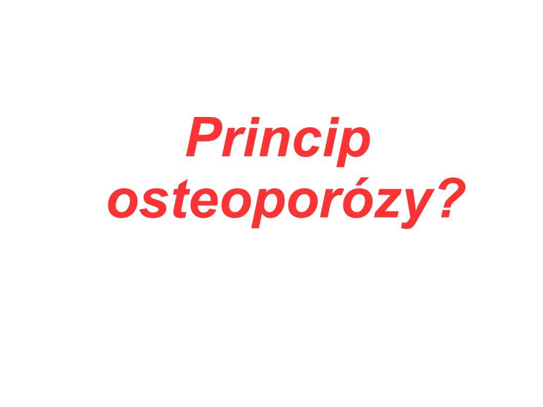 Princip osteoporózy