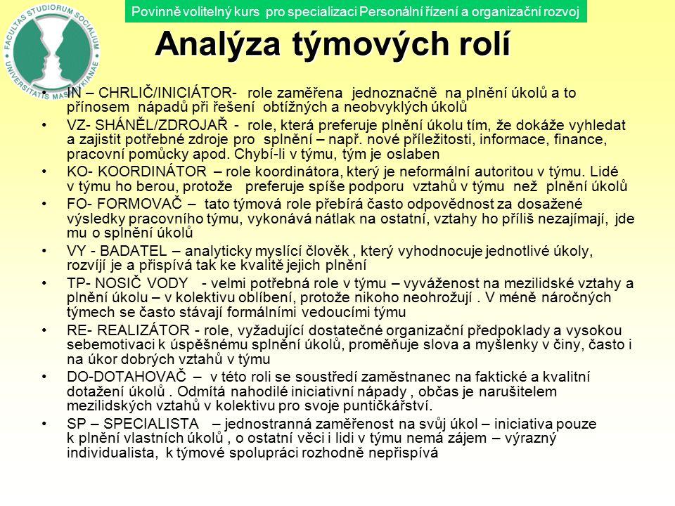 Analýza týmových rolí