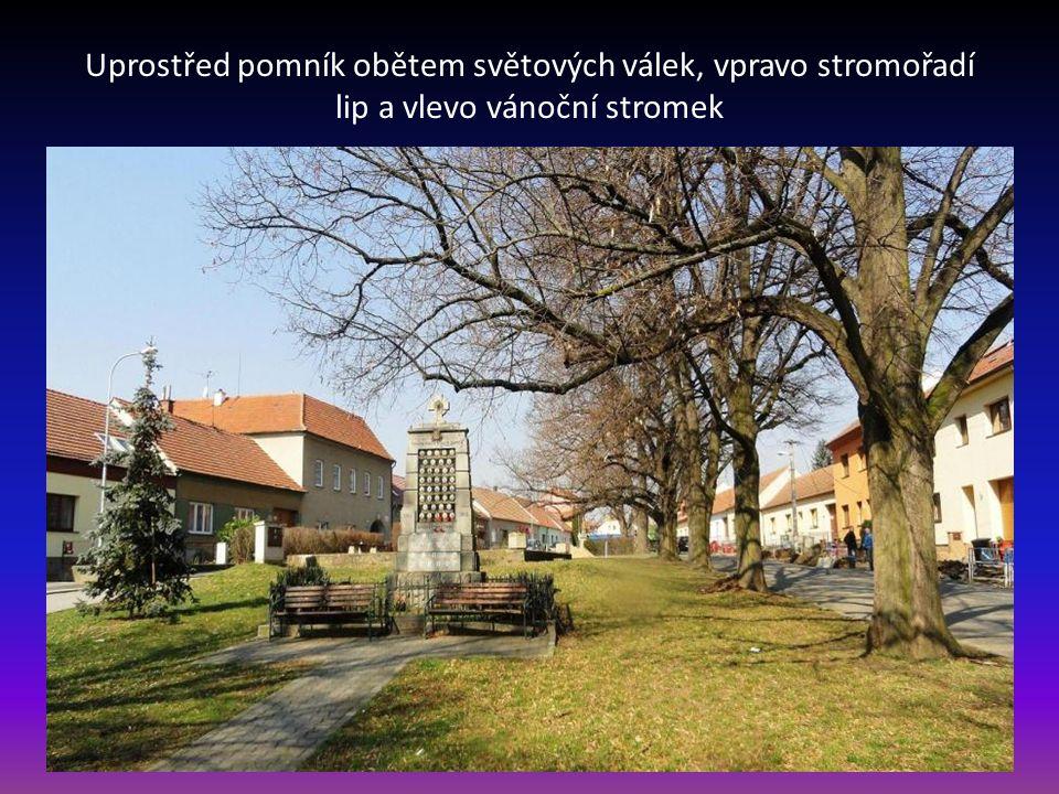 Uprostřed pomník obětem světových válek, vpravo stromořadí lip a vlevo vánoční stromek