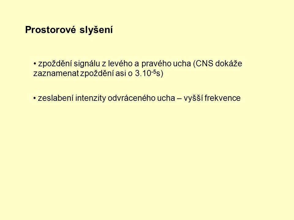 Prostorové slyšení zpoždění signálu z levého a pravého ucha (CNS dokáže zaznamenat zpoždění asi o 3.10-5s)