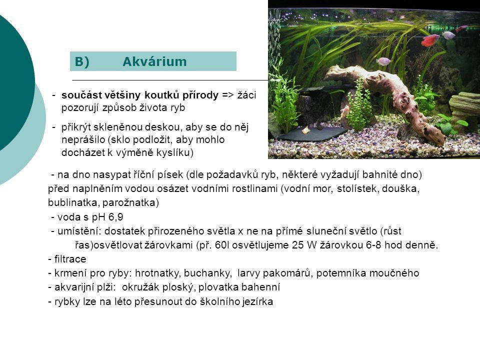 B) Akvárium součást většiny koutků přírody => žáci pozorují způsob života ryb.