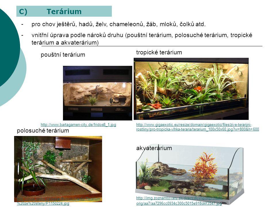 C) Terárium pro chov ještěrů, hadů, želv, chameleonů, žáb, mloků, čolků atd.