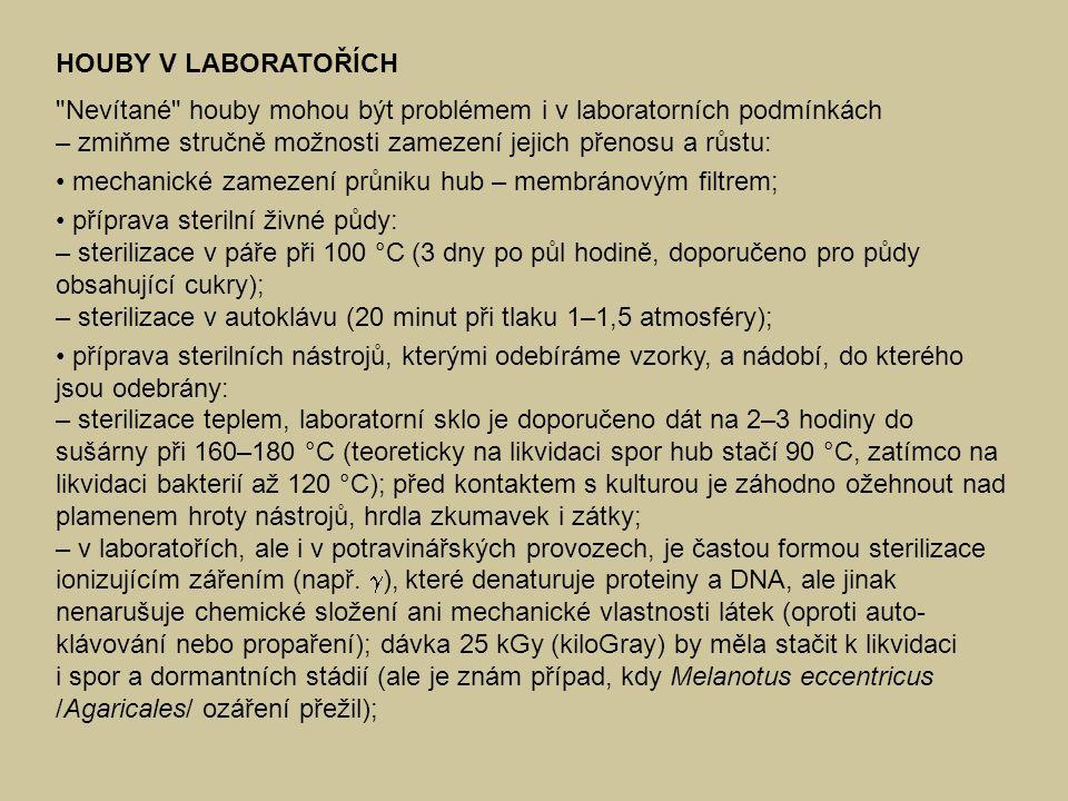 Nevítané houby mohou být problémem i v laboratorních podmínkách