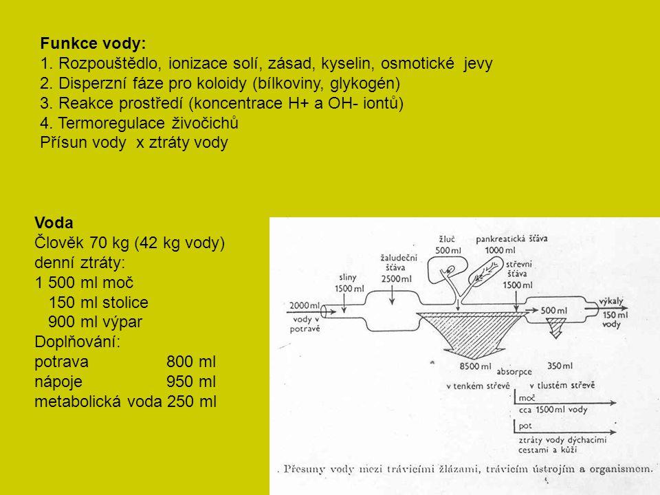 Funkce vody: 1. Rozpouštědlo, ionizace solí, zásad, kyselin, osmotické jevy. 2. Disperzní fáze pro koloidy (bílkoviny, glykogén)