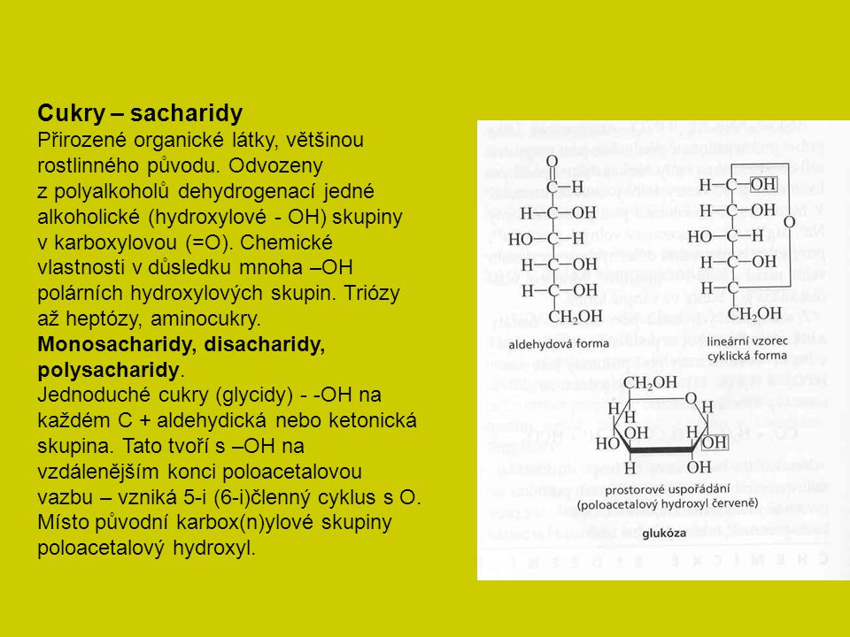 Cukry – sacharidy