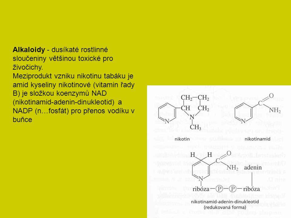 Alkaloidy - dusíkaté rostlinné sloučeniny většinou toxické pro živočichy.