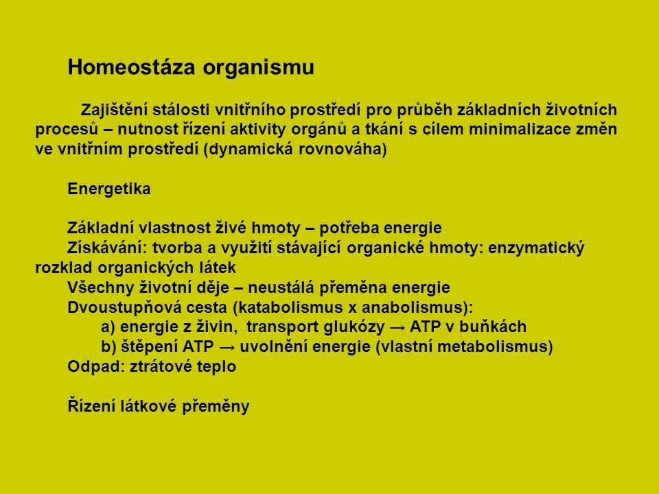 Homeostáza organismu