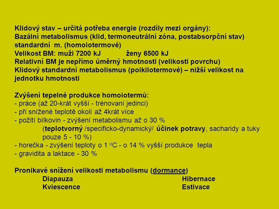 Klidový stav – určitá potřeba energie (rozdíly mezi orgány):
