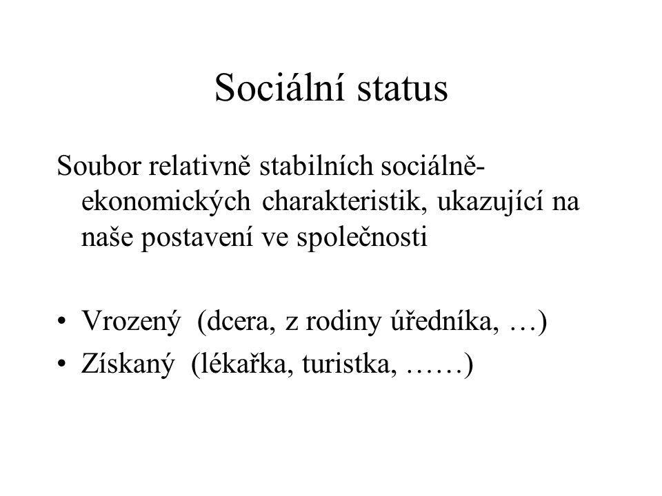 Sociální status Soubor relativně stabilních sociálně-ekonomických charakteristik, ukazující na naše postavení ve společnosti.
