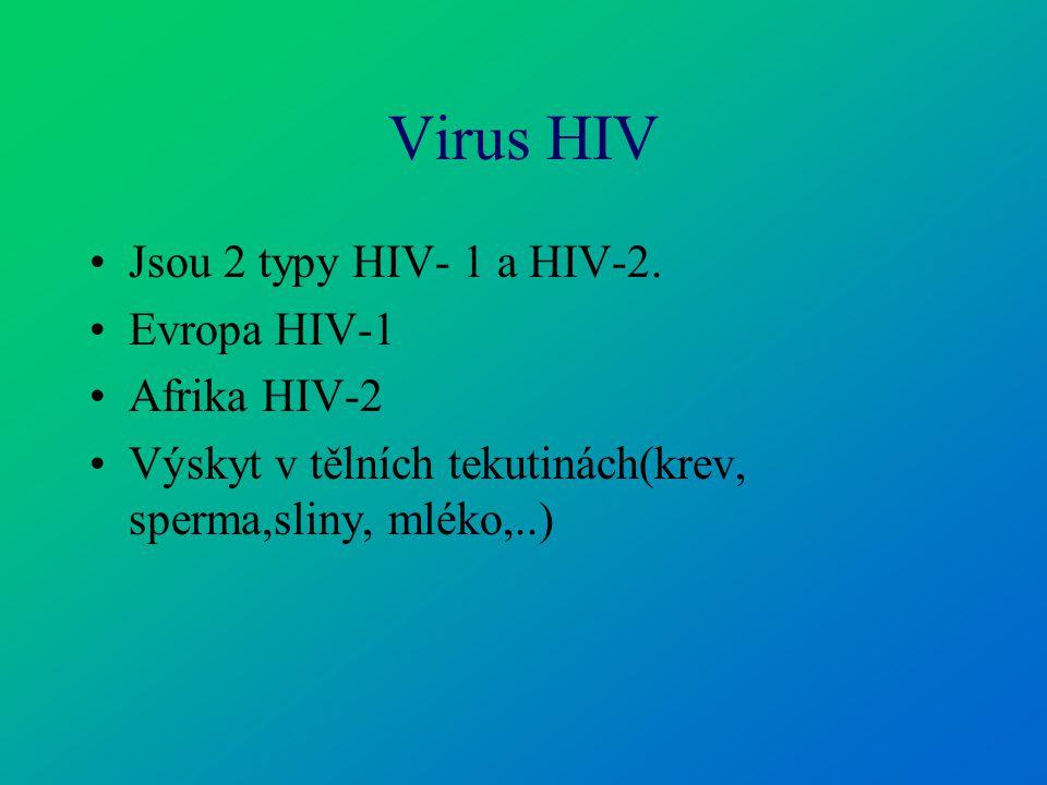 Virus HIV Jsou 2 typy HIV- 1 a HIV-2. Evropa HIV-1 Afrika HIV-2