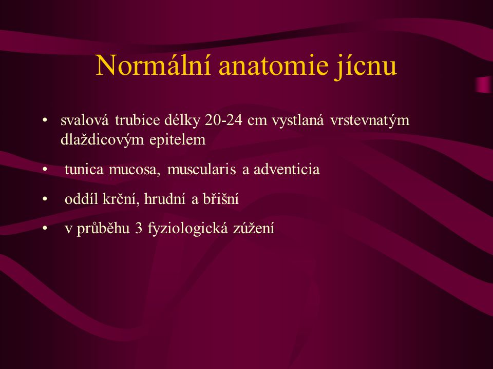 Normální anatomie jícnu