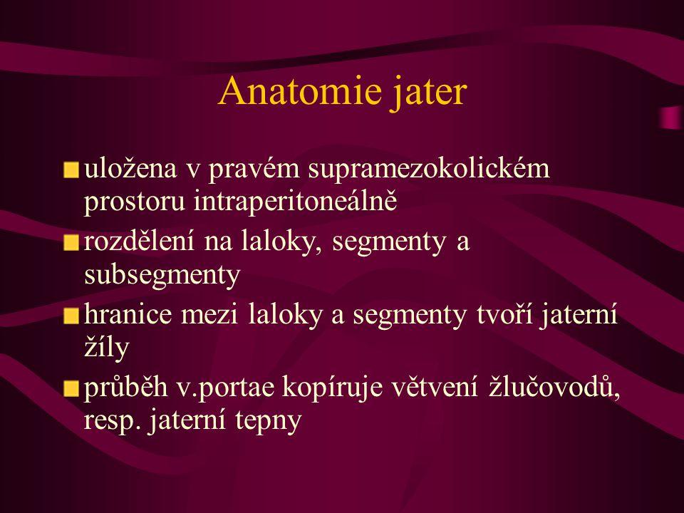 Anatomie jater uložena v pravém supramezokolickém prostoru intraperitoneálně. rozdělení na laloky, segmenty a subsegmenty.