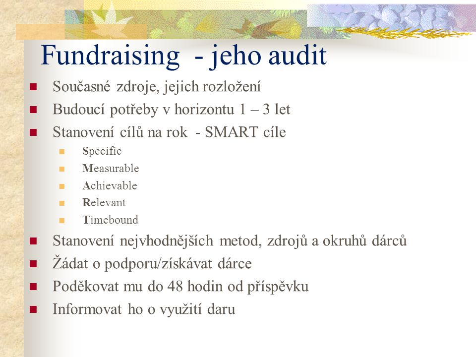 Fundraising - jeho audit