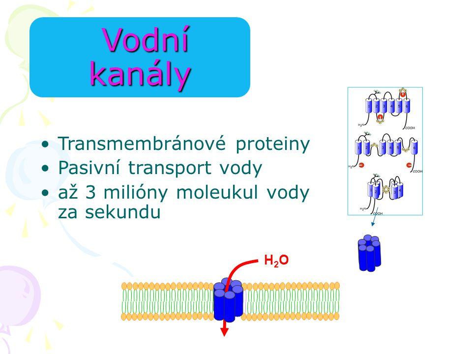 Vodní kanály Transmembránové proteiny Pasivní transport vody