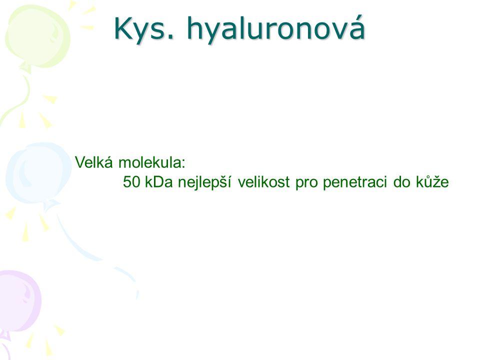 Kys. hyaluronová Velká molekula: