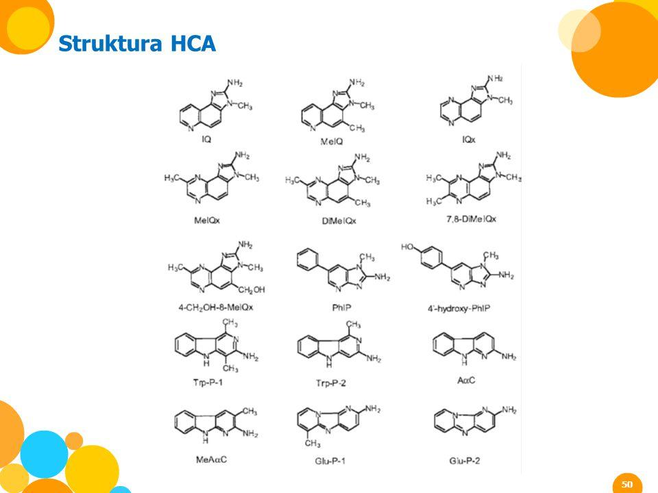 Struktura HCA