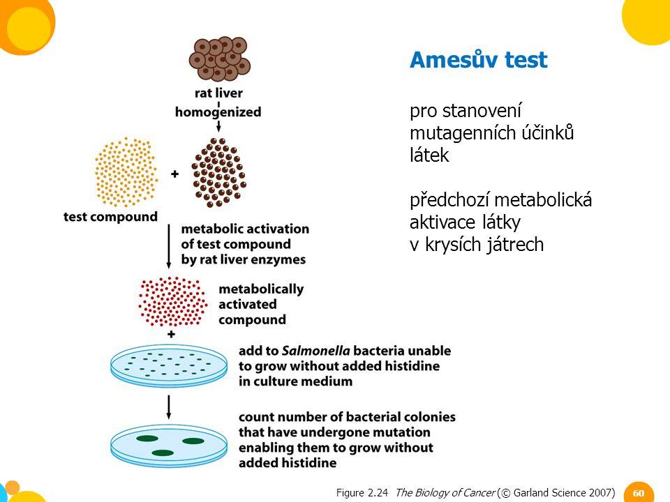 Amesův test pro stanovení mutagenních účinků látek