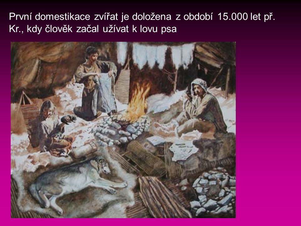 První domestikace zvířat je doložena z období 15. 000 let př. Kr