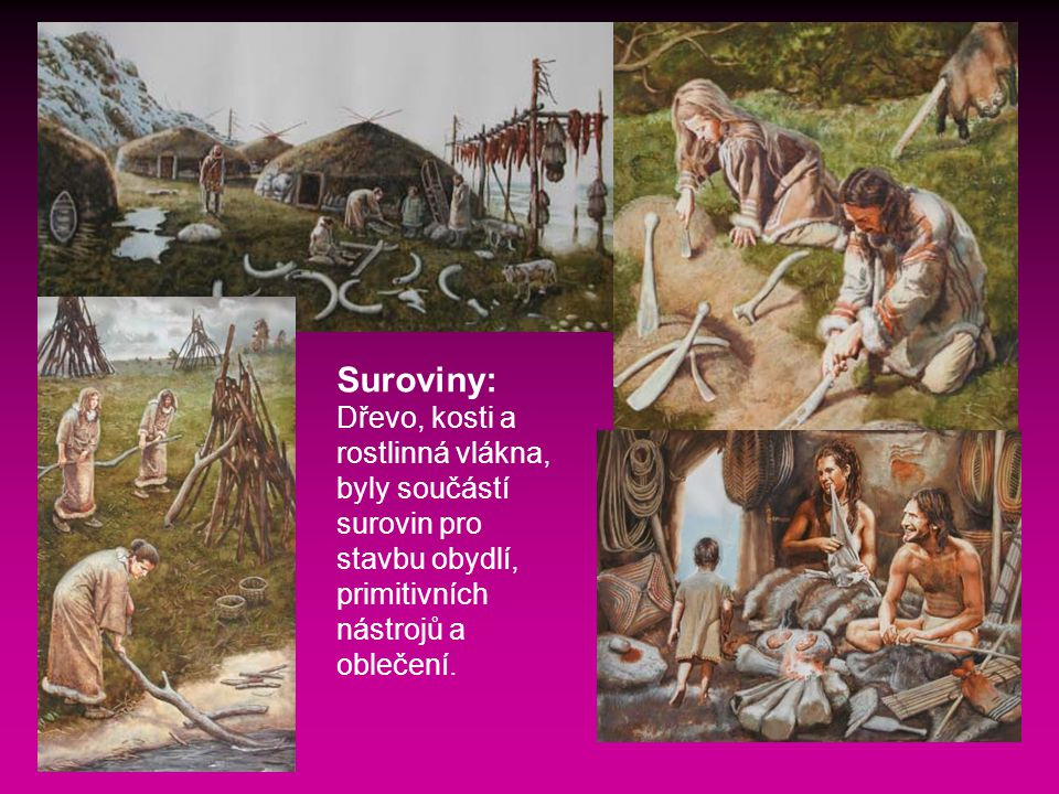 Suroviny: Dřevo, kosti a rostlinná vlákna, byly součástí surovin pro stavbu obydlí, primitivních nástrojů a oblečení.