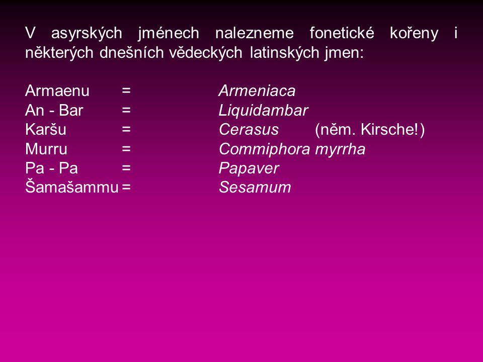 V asyrských jménech nalezneme fonetické kořeny i některých dnešních vědeckých latinských jmen: