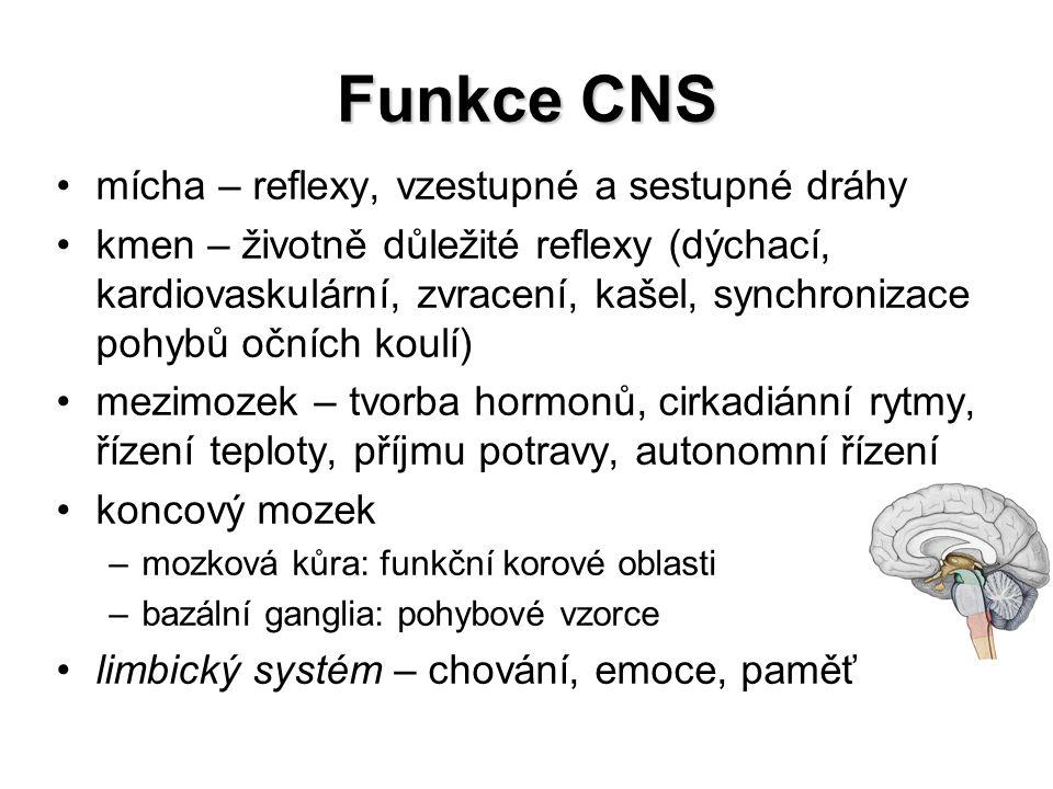 Funkce CNS mícha – reflexy, vzestupné a sestupné dráhy