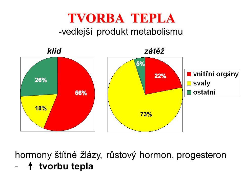 TVORBA TEPLA -vedlejší produkt metabolismu
