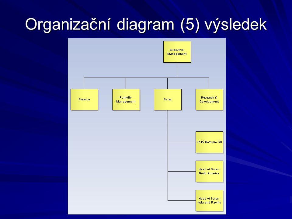 Organizační diagram (5) výsledek