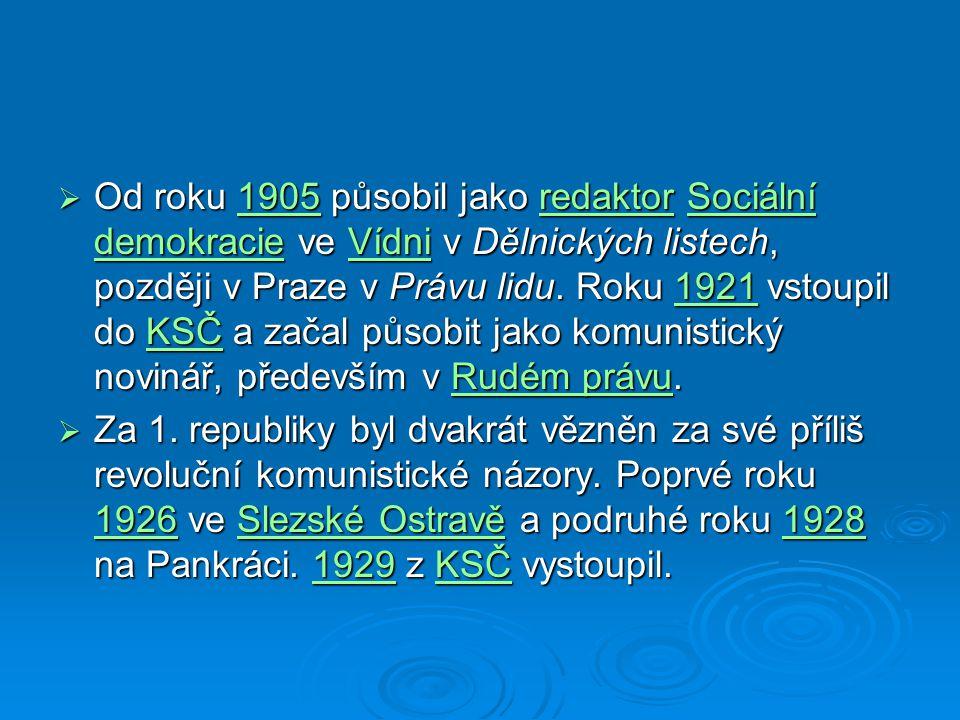 Od roku 1905 působil jako redaktor Sociální demokracie ve Vídni v Dělnických listech, později v Praze v Právu lidu. Roku 1921 vstoupil do KSČ a začal působit jako komunistický novinář, především v Rudém právu.