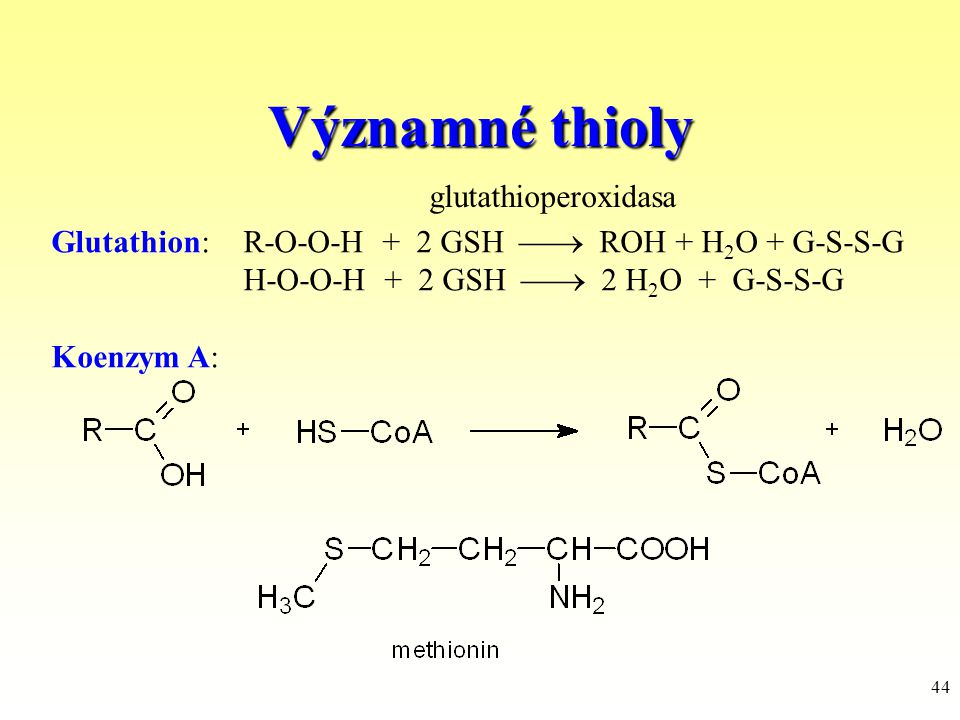 Významné thioly glutathioperoxidasa