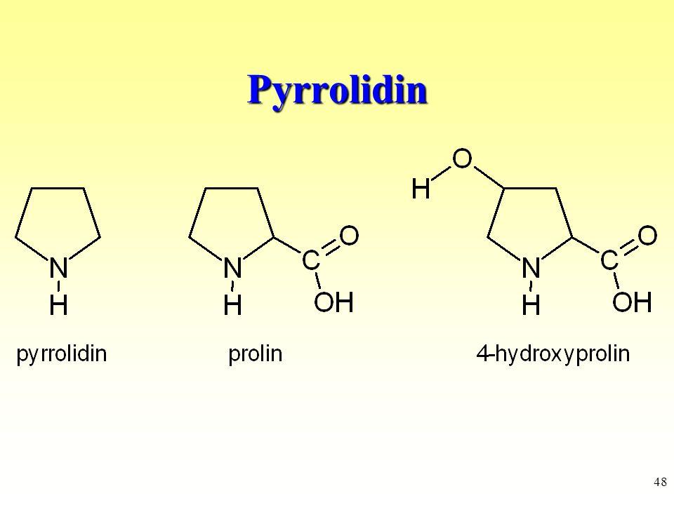 Pyrrolidin