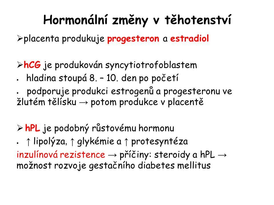 Hormonální změny v těhotenství