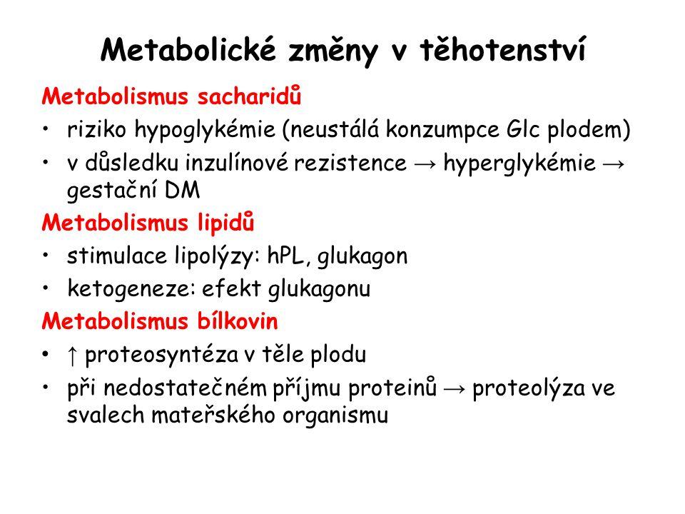 Metabolické změny v těhotenství