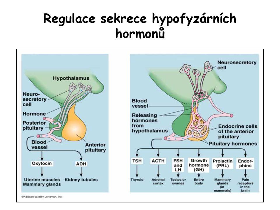 Regulace sekrece hypofyzárních hormonů