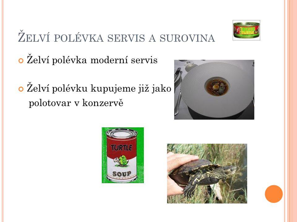 Želví polévka servis a surovina