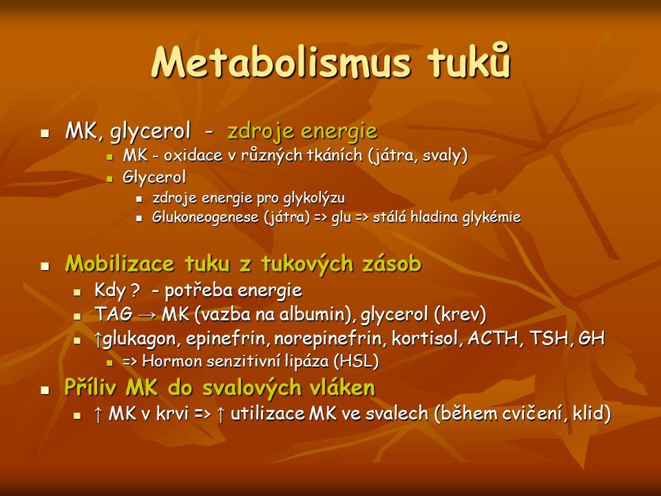 Metabolismus tuků MK, glycerol - zdroje energie