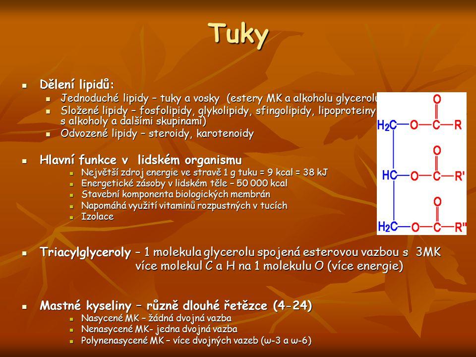 Tuky Dělení lipidů: Hlavní funkce v lidském organismu