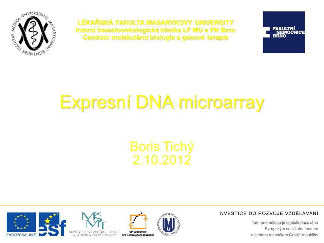 Expresní DNA microarray