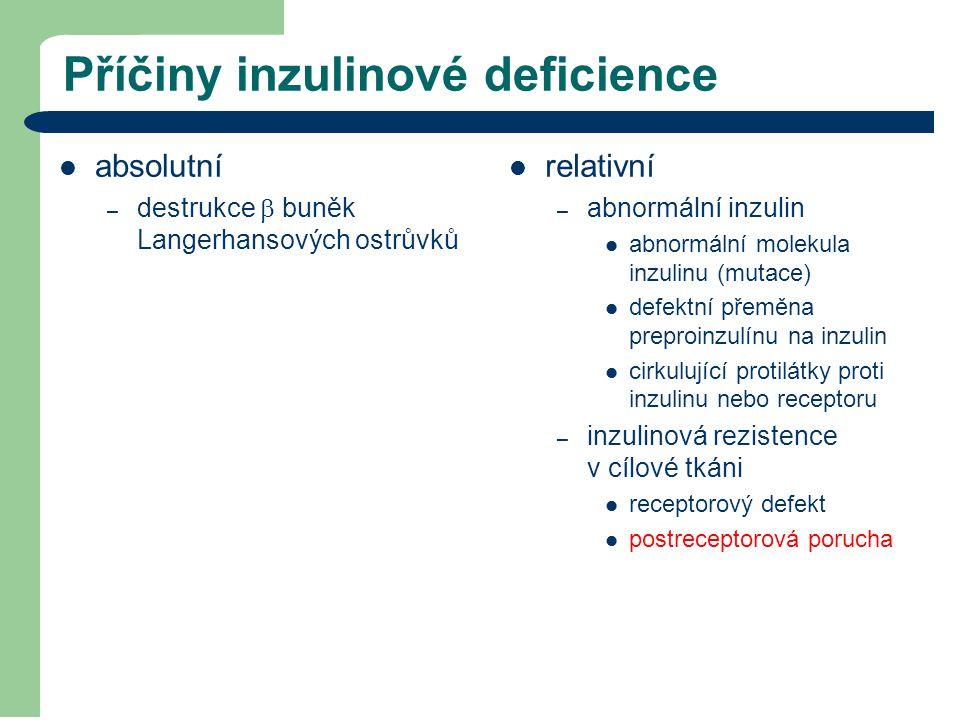 Příčiny inzulinové deficience