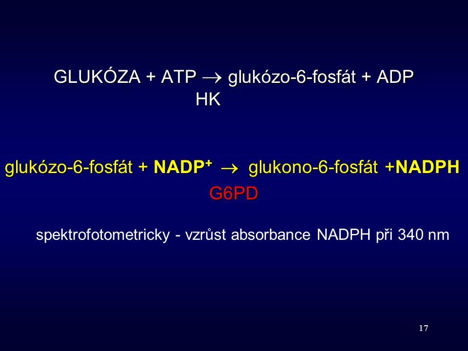 GLUKÓZA + ATP  glukózo-6-fosfát + ADP