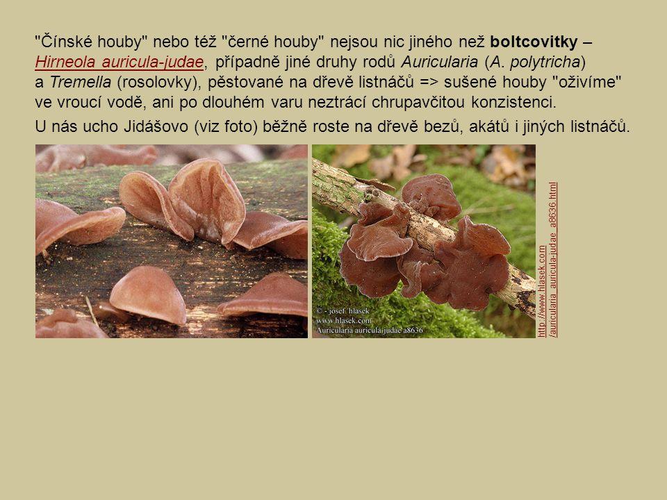 Čínské houby nebo též černé houby nejsou nic jiného než boltcovitky – Hirneola auricula-judae, případně jiné druhy rodů Auricularia (A. polytricha) a Tremella (rosolovky), pěstované na dřevě listnáčů => sušené houby oživíme ve vroucí vodě, ani po dlouhém varu neztrácí chrupavčitou konzistenci.