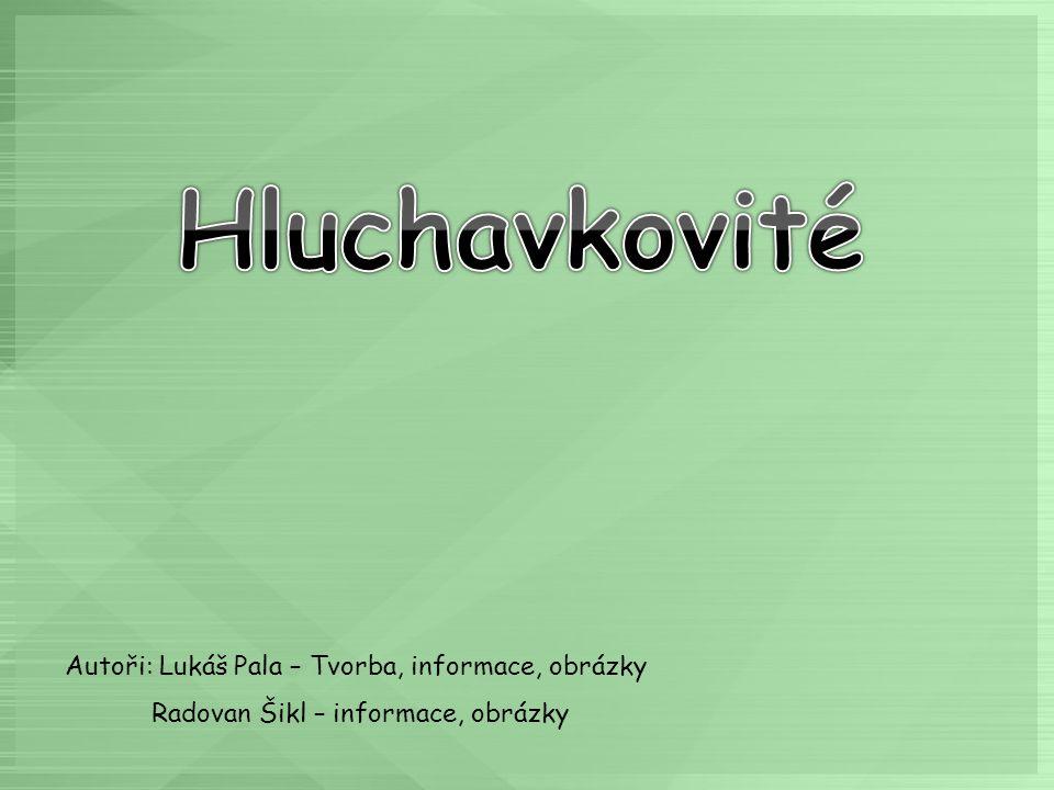 Hluchavkovité Autoři: Lukáš Pala – Tvorba, informace, obrázky
