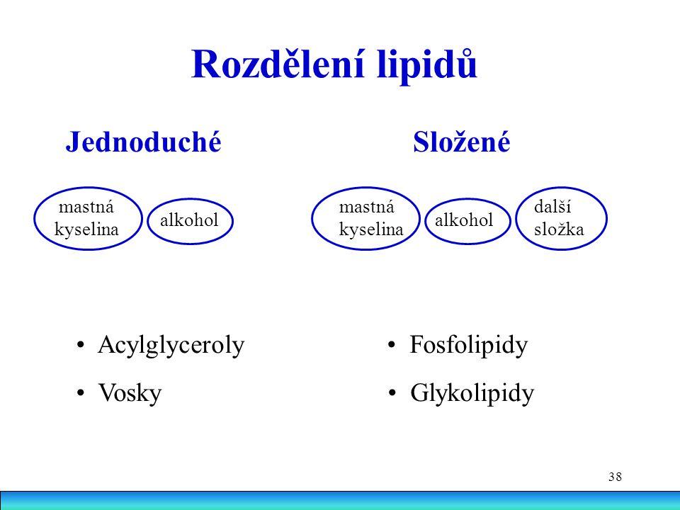 Rozdělení lipidů Jednoduché Složené • Acylglyceroly • Fosfolipidy