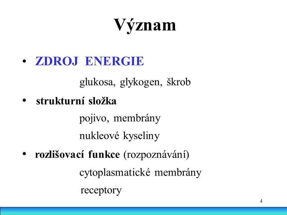 Význam • ZDROJ ENERGIE glukosa, glykogen, škrob • strukturní složka