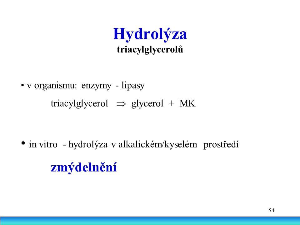 Hydrolýza triacylglycerolů
