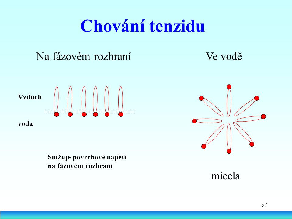 Chování tenzidu Na fázovém rozhraní Ve vodě micela Vzduch voda