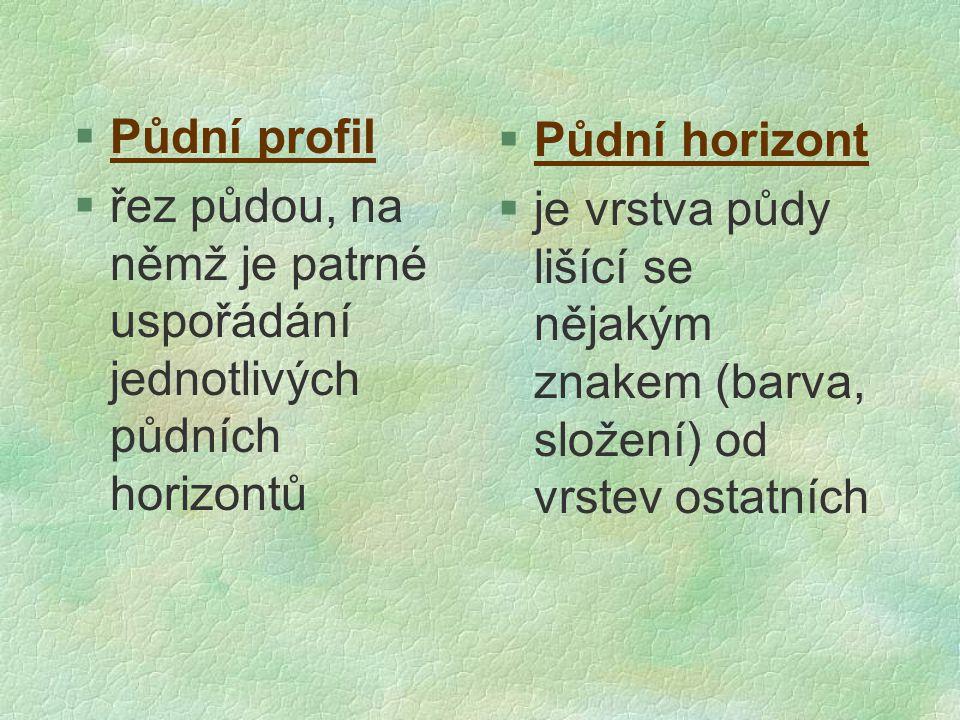 Půdní profil řez půdou, na němž je patrné uspořádání jednotlivých půdních horizontů. Půdní horizont.