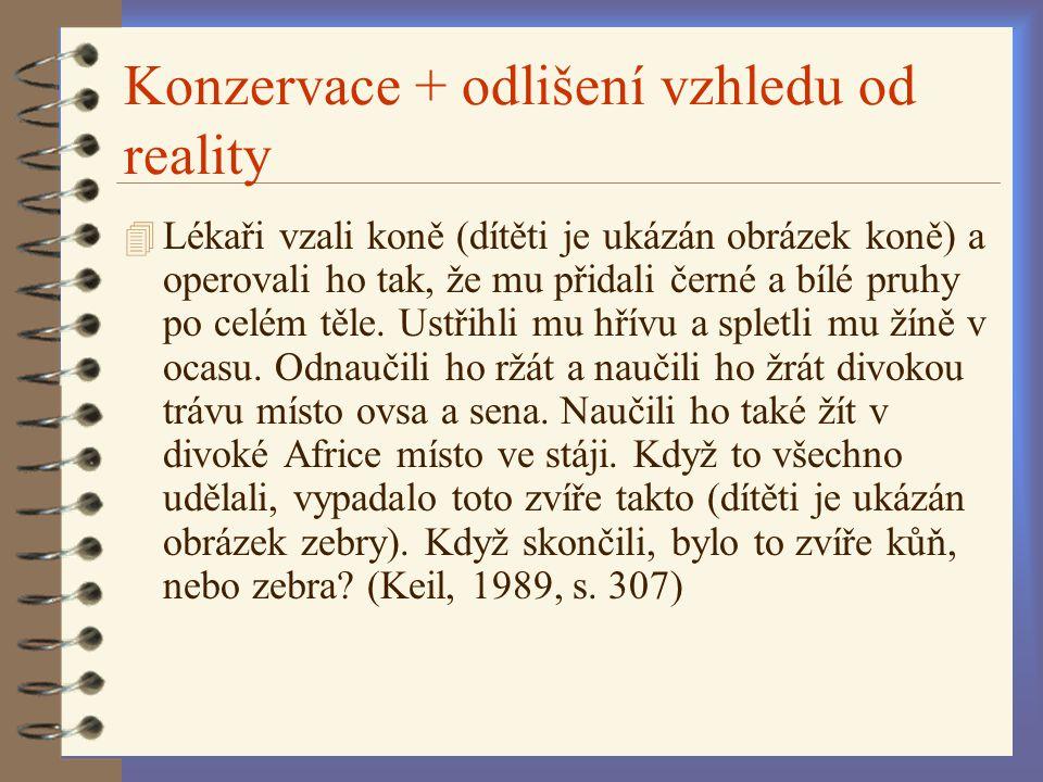 Konzervace + odlišení vzhledu od reality