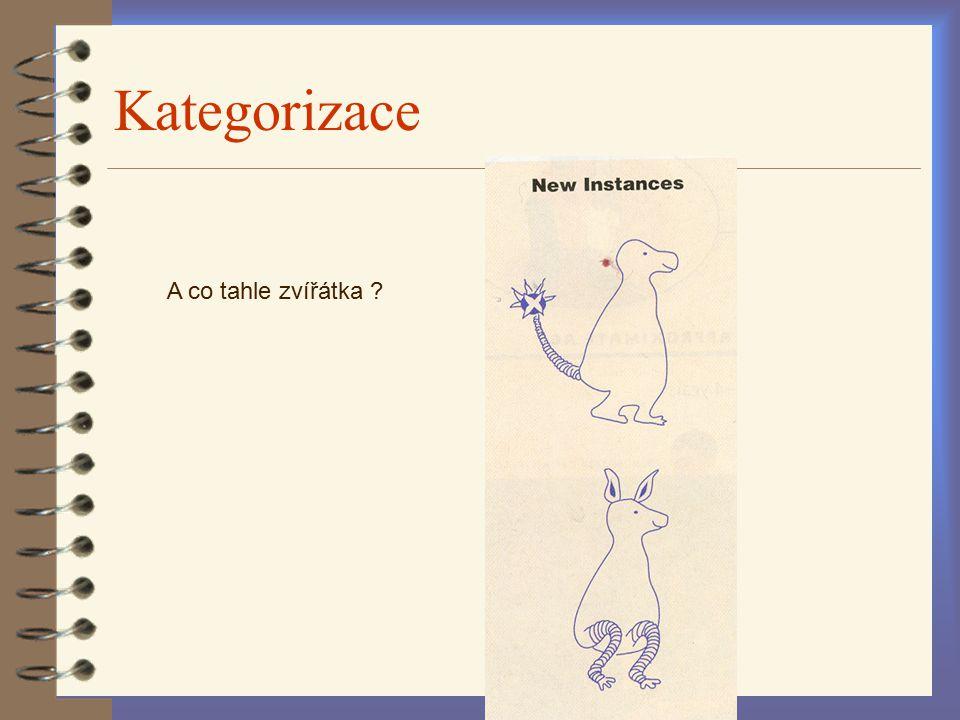 Kategorizace A co tahle zvířátka